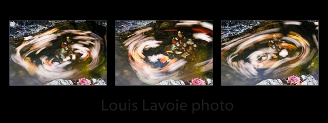 Ruisseau - tourbillons